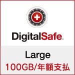DigitalSafe(デジタルセーフ):Large (新規/更新) 100GB/年額支払