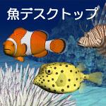 魚デスクトップ