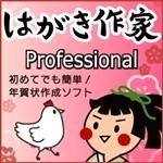 【新発売】はがき作家 10 Professional